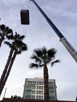 crane-lift